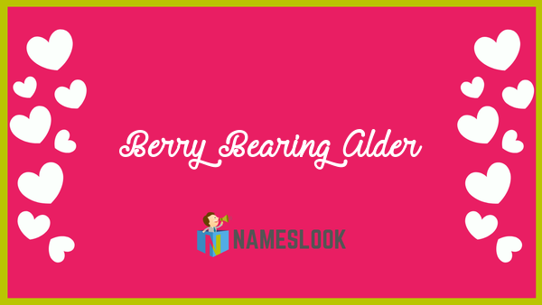 Berry Bearing Alder Meaning Pronunciation Origin And Numerology