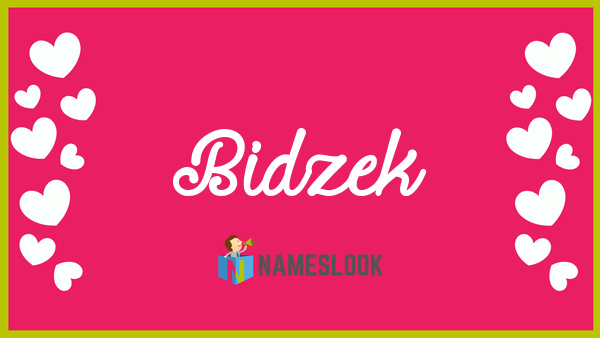 Bidzek Meaning Pronunciation Origin And Numerology Nameslook