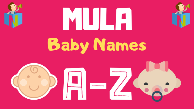 Baby Names for Mula Nakshatra - NamesLook