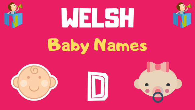 Welsh Baby names starting with D - NamesLook