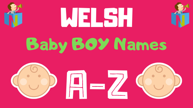 Welsh Baby Boy Names | 100+ Names Available - NamesLook